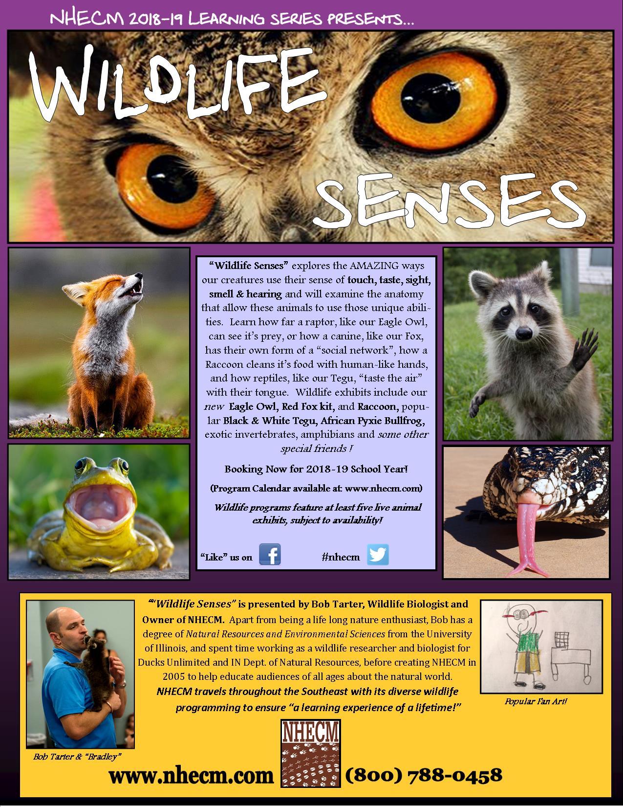 WildlifeSenses18-19 Flier
